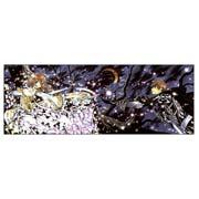 Tsubasa Reservoir Chronicle. Размер: 150 х 60 см
